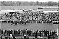 SJ4065 : Chester Races, May 1977 by Jeff Buck