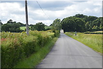 TQ5145 : Road north of Vexour Bridge by N Chadwick