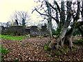 H5371 : Ruined farm building, Bancran by Kenneth  Allen