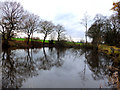SD5513 : Fish pond South of Blainscough Hall, Coppull Moor by Gary Rogers