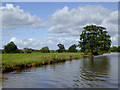 SJ6545 : Canal and pasture north-west of Audlem, Cheshire by Roger  Kidd