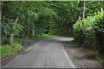 TQ5346 : Bend, Cinder Hill Lane by N Chadwick