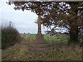 SJ4665 : Monument on Plough Lane by JThomas