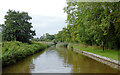 SJ5446 : Llangollen Canal south-west of Norbury Common, Cheshire by Roger  Kidd