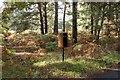 TM3446 : Redundant postbox, Lower Hollesley Common by Simon Mortimer