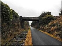 N3548 : Bridge on the Athlone to Mullingar Cycleway by JP