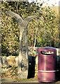 NX5956 : Millennium Milepost and Purple Bin by Moose