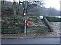 SD9125 : Elizabeth II postbox on Burnley Road, Lydgate by JThomas