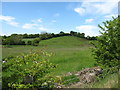 H8528 : Drumlins across the Border in Co Monaghan by Eric Jones