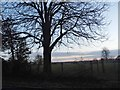 SU8097 : Sunset over Bledlow Ridge by David Howard
