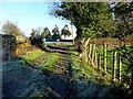 H4869 : Lane, Edenderry by Kenneth  Allen