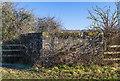 SU1515 : WWII Hampshire - Ringwood Stop Line, Avon Valley - Fordingbridge anti-tank island (31) by Mike Searle