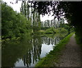 TL0703 : Towpath along the Grand Union Canal by Mat Fascione