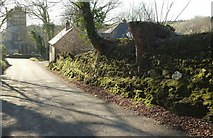 SX0882 : Lane at Lanteglos by Derek Harper