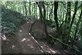ST7966 : Path on the side of Bathford Hill by Bill Boaden