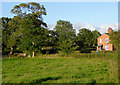 SJ5245 : Pasture east of Bell o' th' Hill, Cheshire by Roger  Kidd