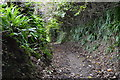 SX5353 : Dismantled railway by N Chadwick
