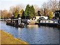 SJ7891 : Narrowboats at Sale by Gerald England