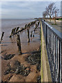 TA1128 : Humber Estuary by Bernard Sharp