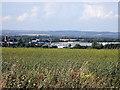 SU4784 : Crop field and research campus by Rudi Winter