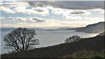 NH7965 : Moray Firth near McFarquhar's Bed by Julian Paren