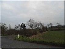 SP9440 : Field by Cranfield Road by David Howard