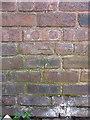 SP0490 : OS benchmark - Handsworth, 88 Albert Road by Richard Law
