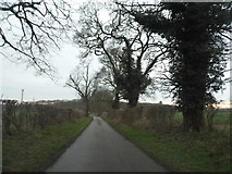 TL0035 : Unnamed road in Steppingley by David Howard