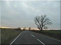 SP9438 : Salford Road, Hulcote by David Howard