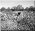 TM0188 : Entrance into an air raid shelter by Evelyn Simak