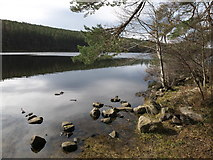 NH6590 : Eastern end of Loch Migdale by Julian Paren