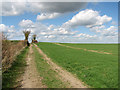 TL3040 : Bridle path to Ashwell Street and Litlington by John Sutton