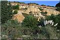 SZ0589 : Canford Cliffs by N Chadwick