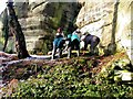 TQ5535 : Lichenologists at Eridge Rocks by Patrick Roper