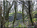 SN6779 : Earthworks of the hill-fort at Pant Da by John Lucas