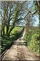 SX1354 : Lane to Haye Farm by Derek Harper