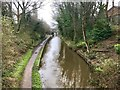 SJ8762 : Macclesfield Canal in Congleton by Jonathan Hutchins