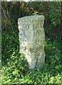 SX1656 : Milestone, Lower Trevollard Crossroads by Derek Harper