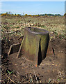SU3401 : WWII Hampshire - RAF Beaulieu airfield: Signals Mortar (4) : Week 15