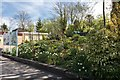 TQ8833 : Garden at Tenterden Station, Kent by Christine Matthews
