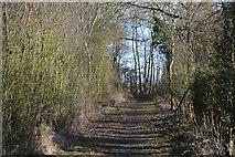 TL3858 : Port Way by N Chadwick