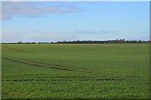TL3858 : Rolling scenery by N Chadwick