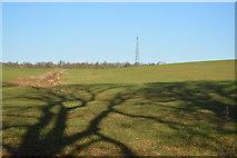 TL3958 : View to Telecom mast by N Chadwick