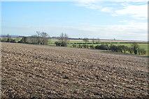 TL3958 : Fallow field by N Chadwick