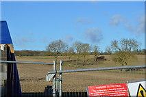 TL4058 : Near Coton by N Chadwick