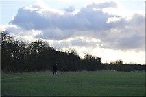 TL4258 : Field boundary by N Chadwick