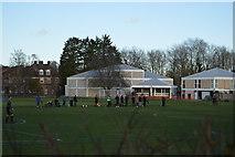 TL4358 : Trinity Old Field by N Chadwick