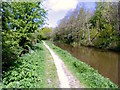 SJ9170 : Towpath northwards by Anthony O'Neil