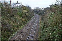 SX4555 : Cornish Main Line, Morice Town by N Chadwick