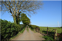N5126 : Country Lane Mount Lucas Offaly Ireland by Kenneth Gallery Smyth